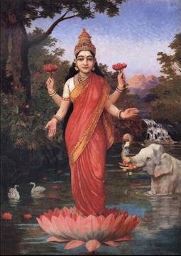 Lakshmi lotus